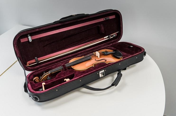 Vijole uz galda futlārī